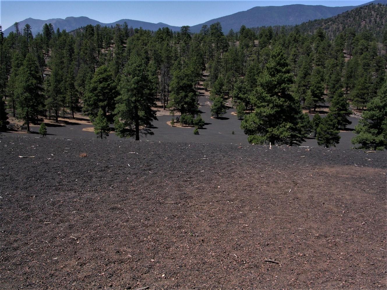 2005 06 26 Sunset Crater Arizona 10.jpg