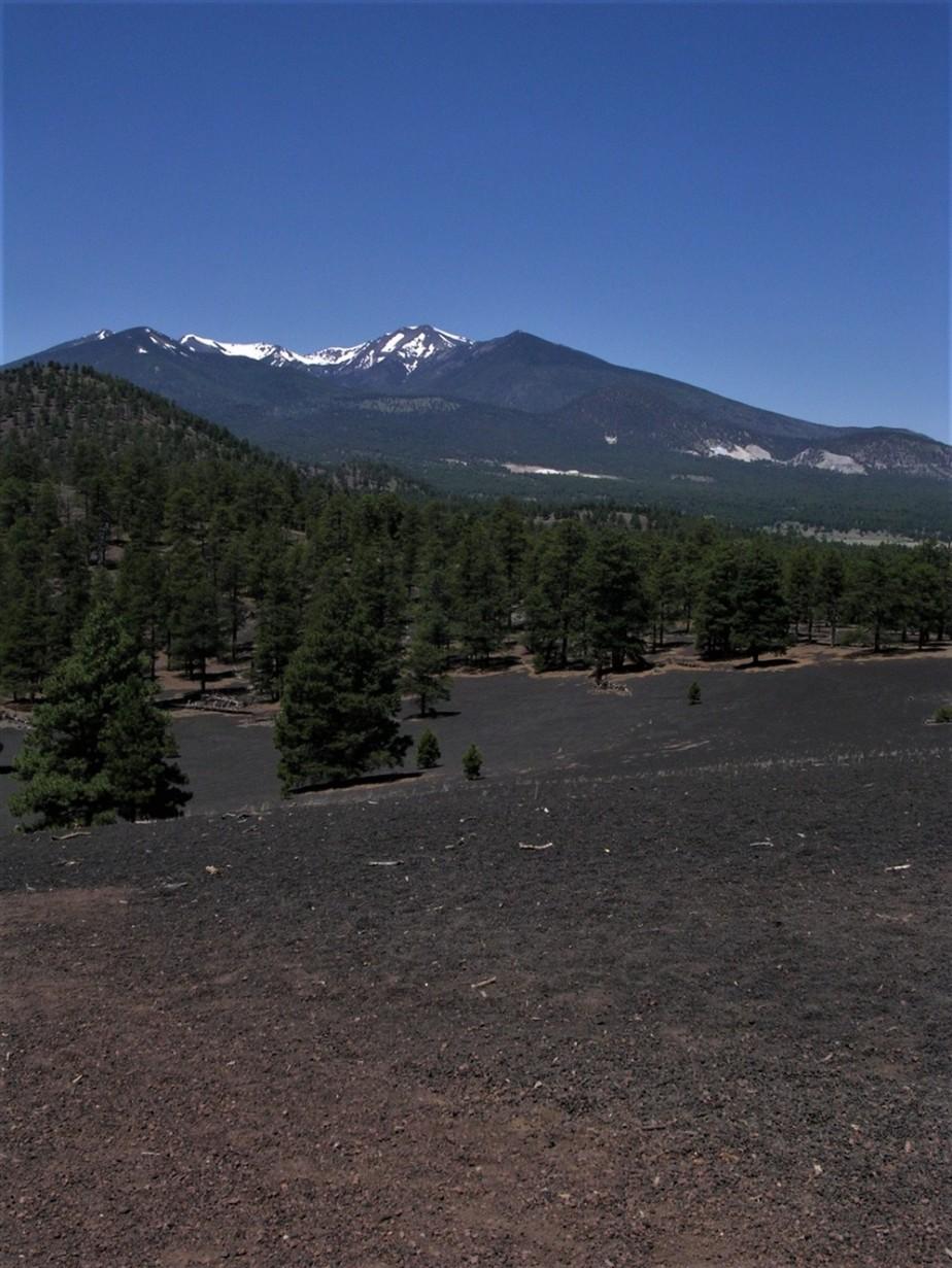 Flagstaff, AZ – June 2005 – SunsetCrater