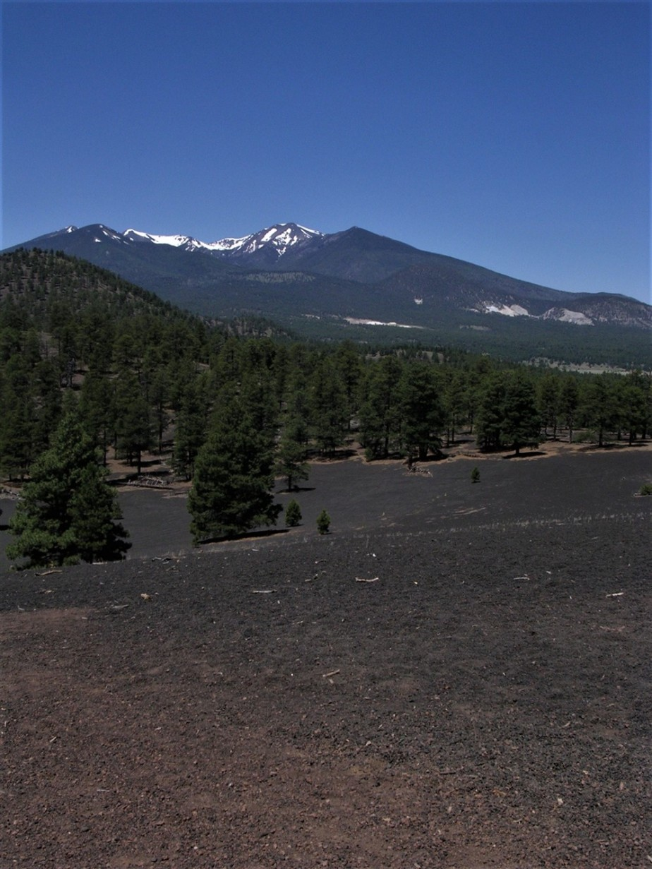 Flagstaff, AZ – June 2005 – Sunset Crater