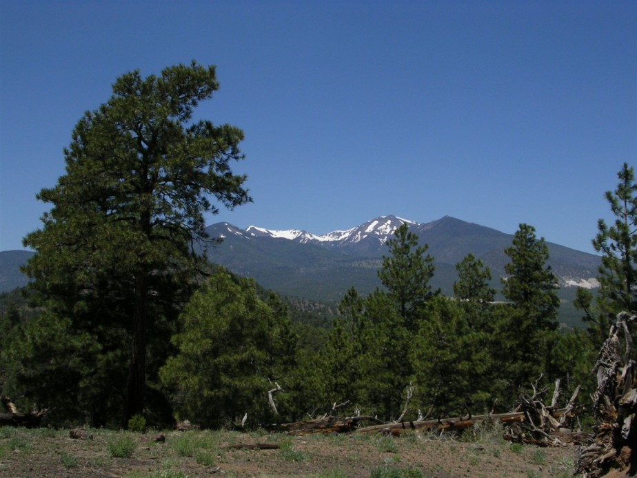 2005 06 26 Sunset Crater Arizona 4.jpg