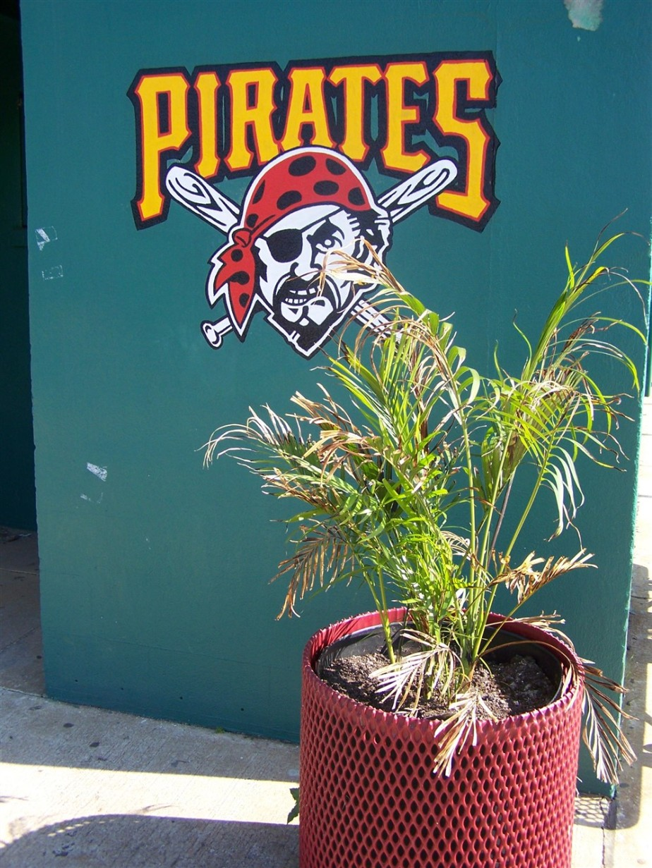 2007 03 09 11 Pittsburgh Pirates Spring Training Bradenton Florida.jpg
