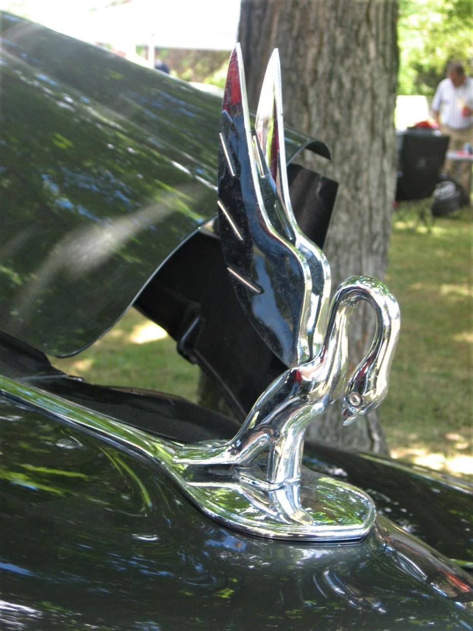 2007 07 21 17 Packard Car Show Warren OH.jpg