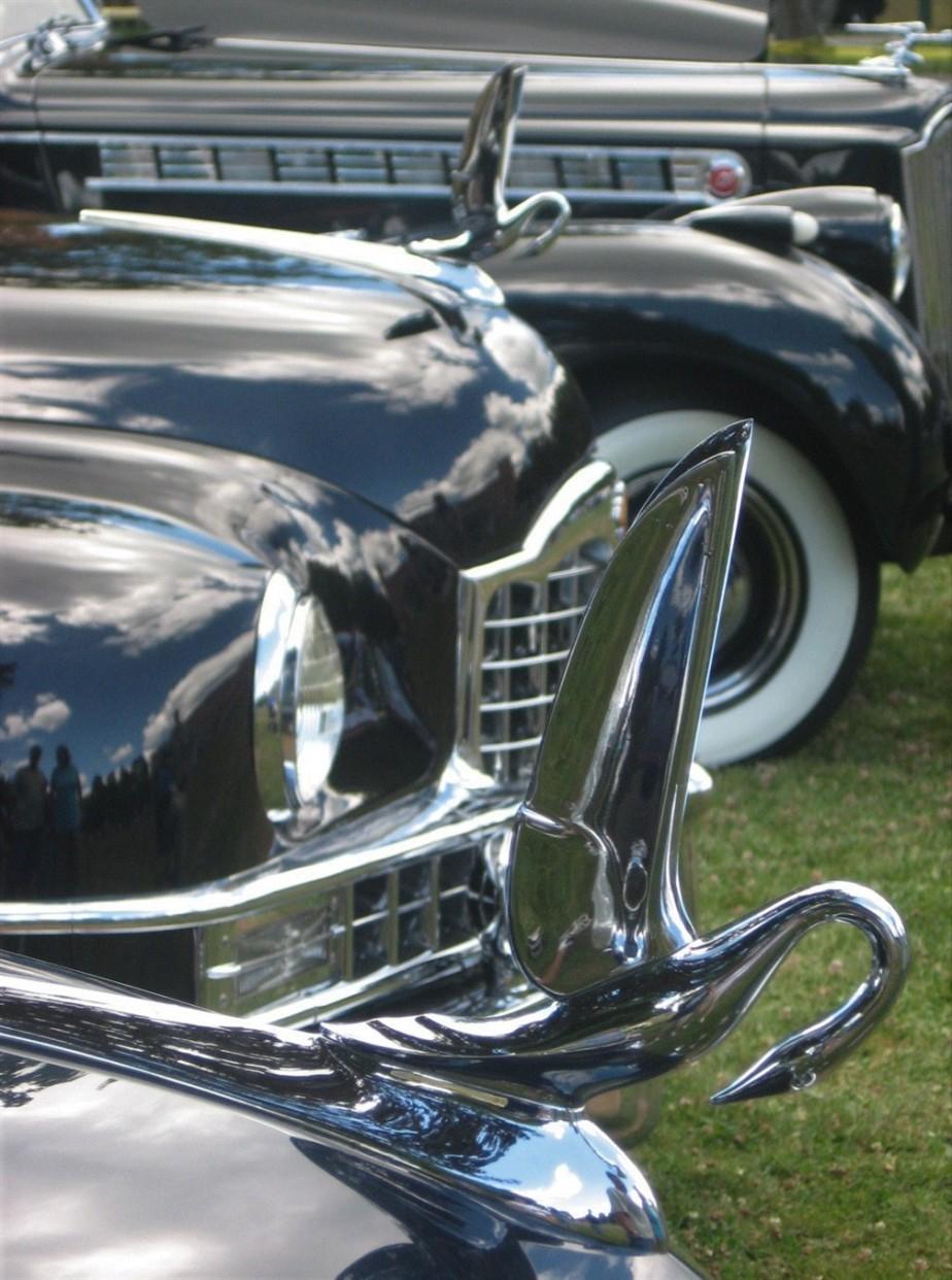 2007 07 21 5 Packard Car Show Warren OH.jpg