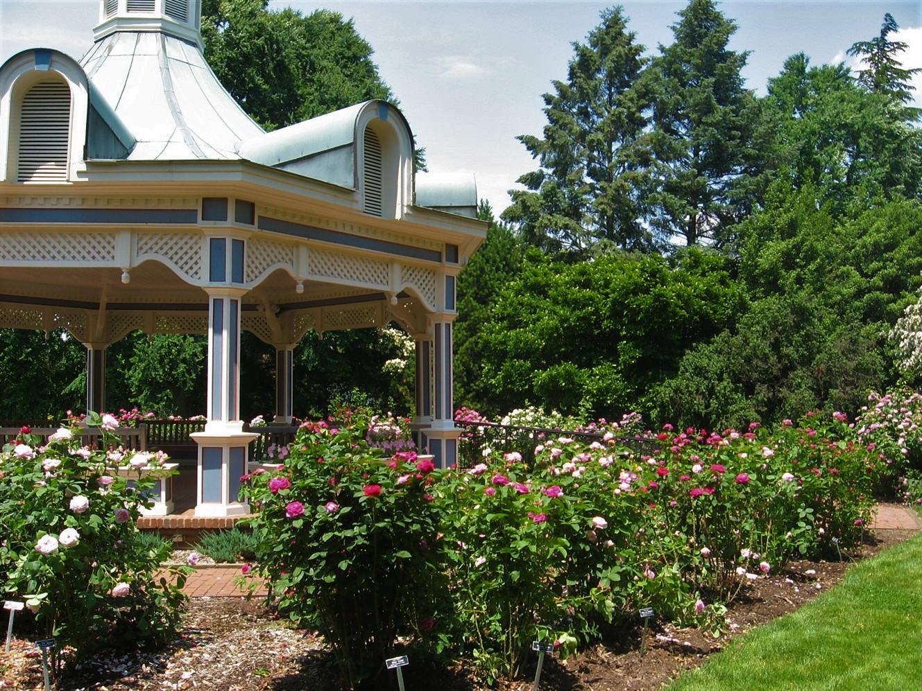 2008 06 21 32 Fellows Gardens Rose Festival.jpg
