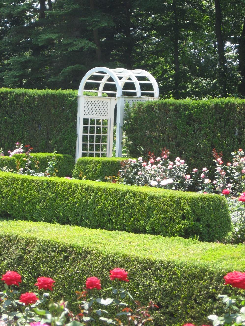 2008 06 21 36 Fellows Gardens Rose Festival.jpg
