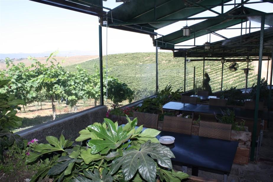 2009 08 24 26 Temecula Winery.jpg