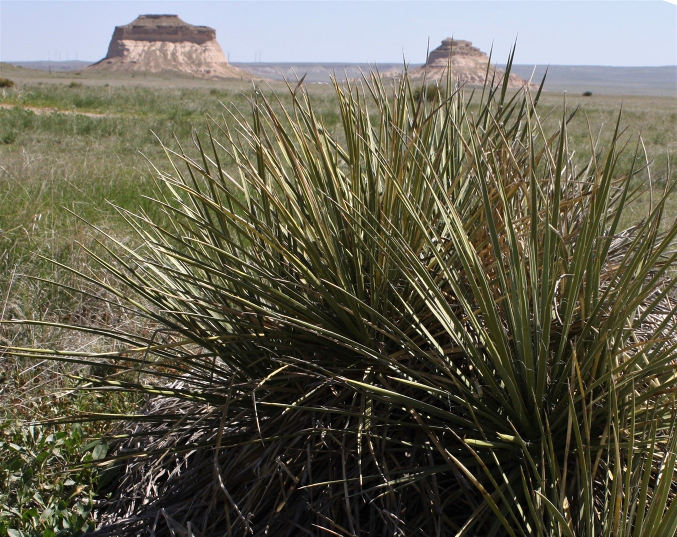 2010 05 23 Colorado 5 Pawnee Bluffs.jpg