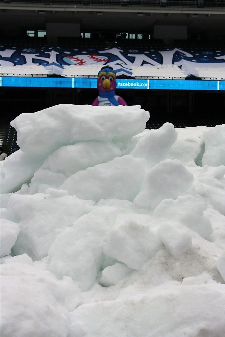 2010 12 27 Cleveland Jacobs Field Snow Days 32.jpg