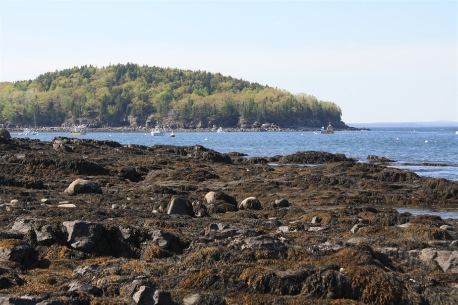 Bar Harbor, ME – May 2011 -The Sun Returns
