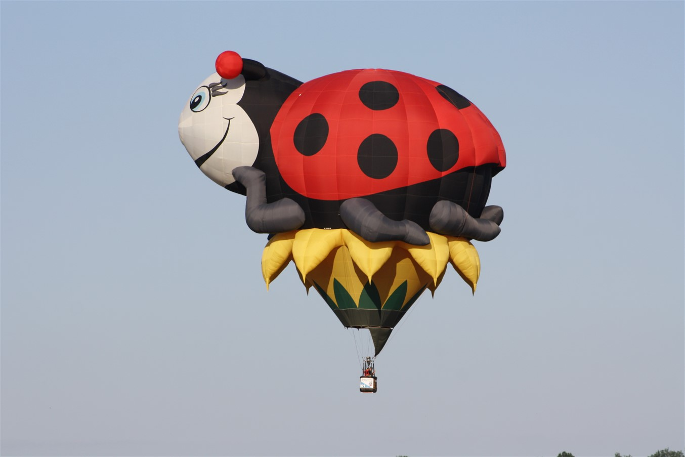 2011 07 30 Canton Hot Air Balloon Festival 13.jpg