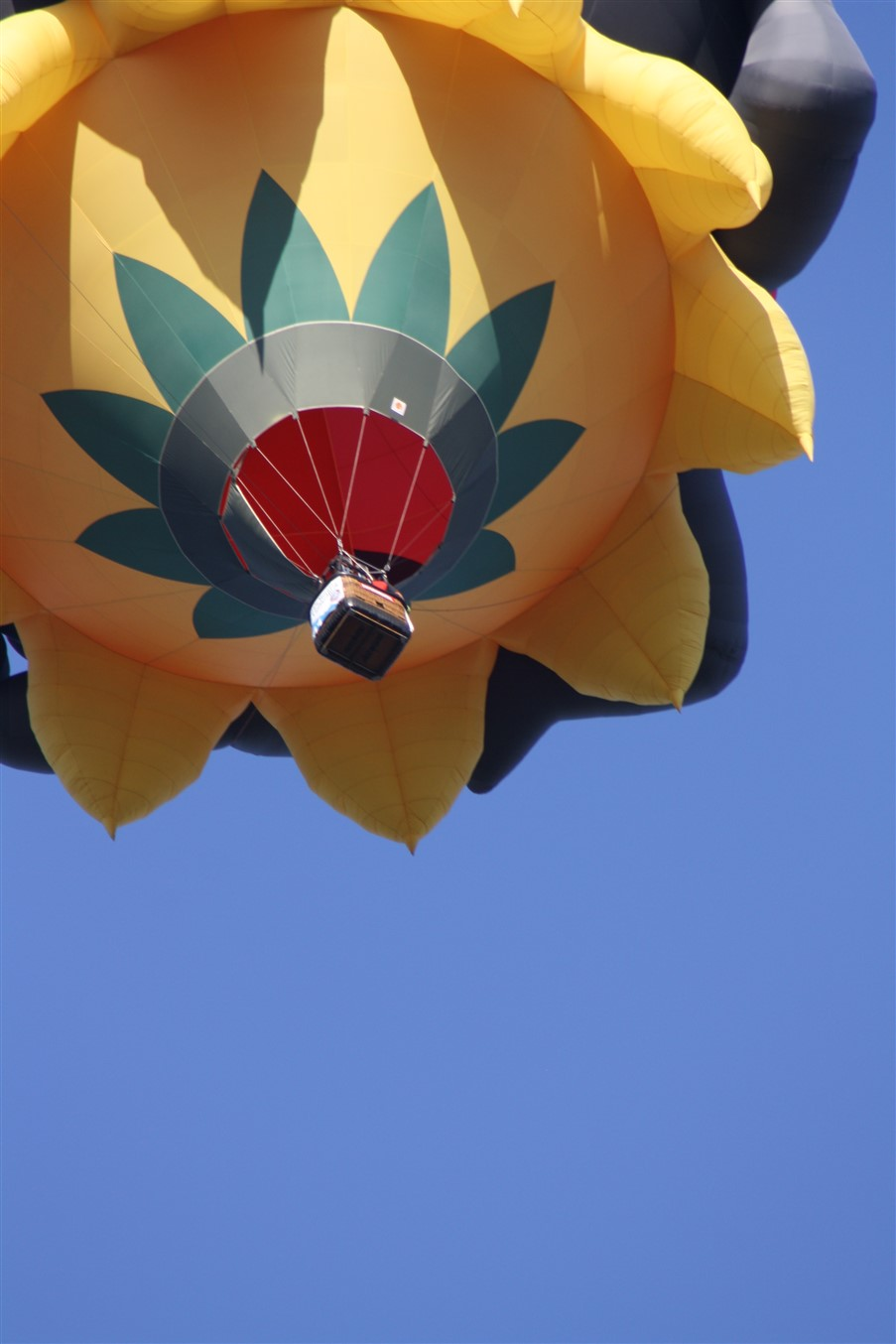 2011 07 30 Canton Hot Air Balloon Festival 17.jpg