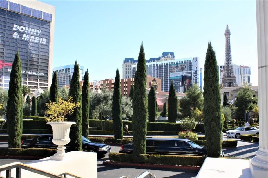 2011 12 04 Las Vegas 1.jpg