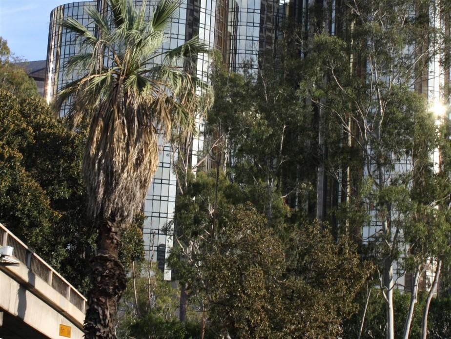 2012 03 10 152 Los Angeles Scenes.jpg
