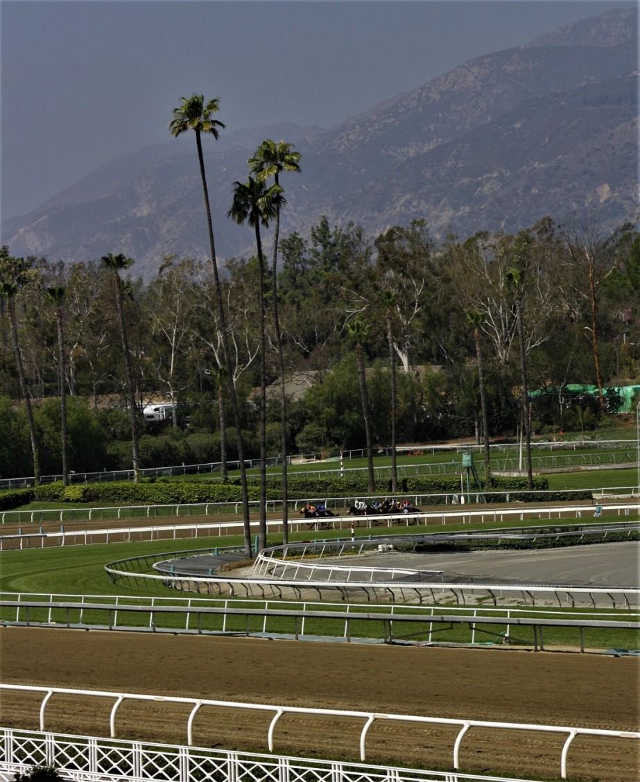 2012 03 11 37 Santa Anita Park.jpg