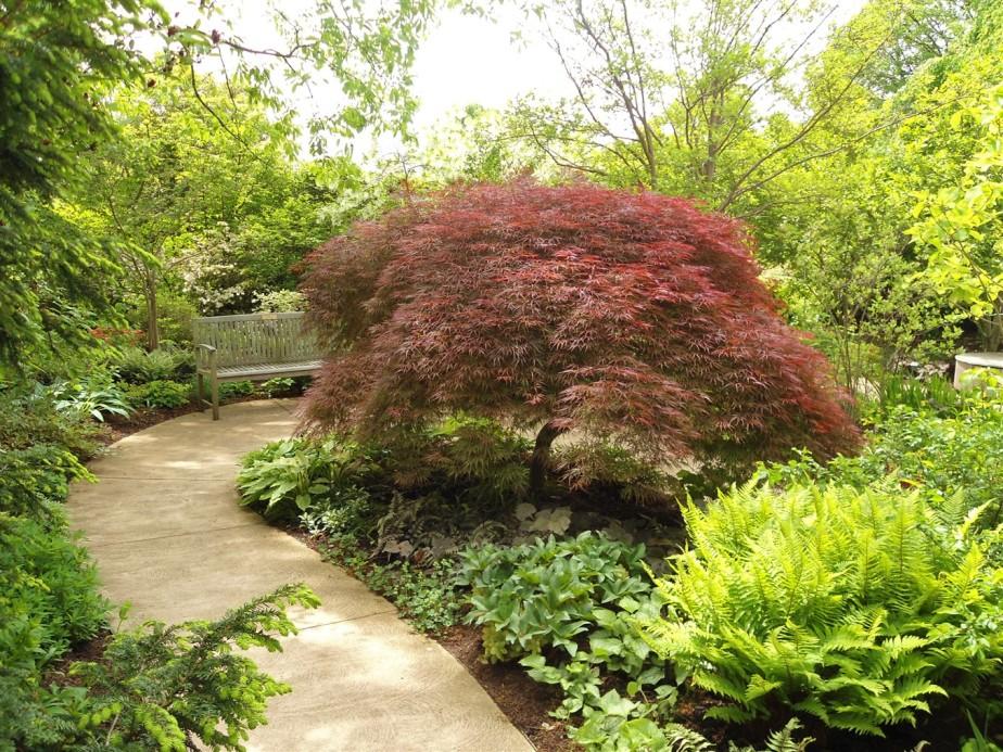 2012 05 12  Cleveland Botanical Garden 5.jpg