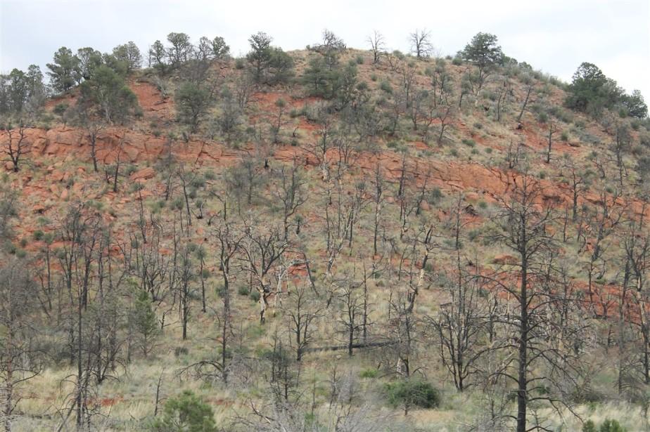 2012 07 06 259 Canon City to Colorado Springs.jpg