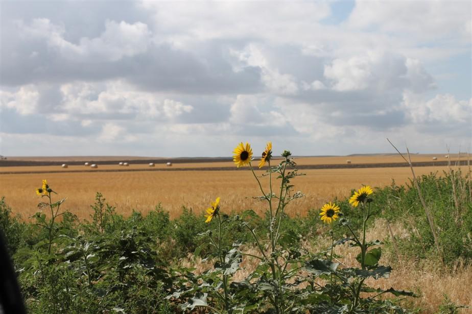 2012 07 09 10 Wyoming.jpg