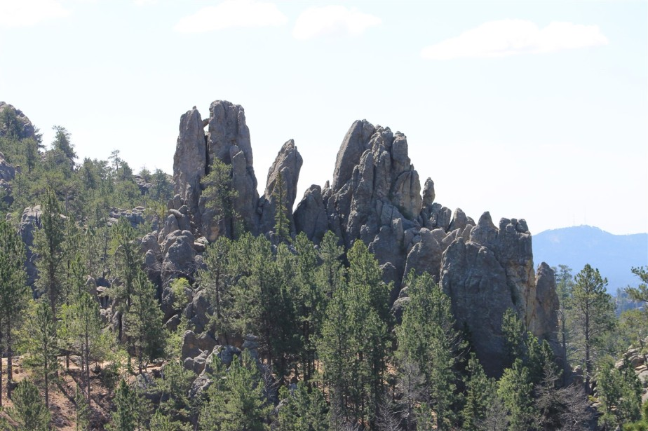 2012 07 10 89 Black Hills South Dakota.jpg