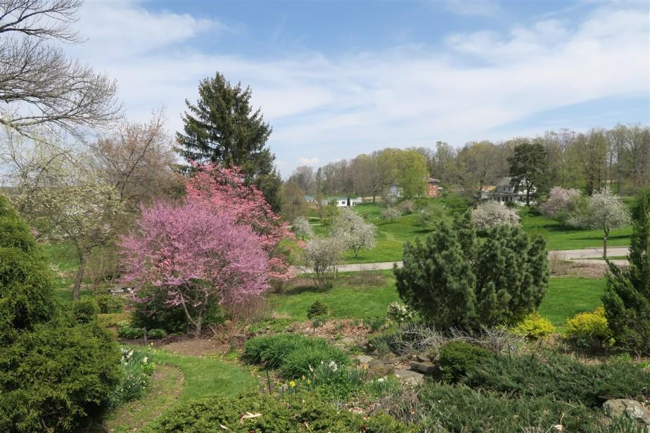 2015 05 02 56 Dawes Arboretum