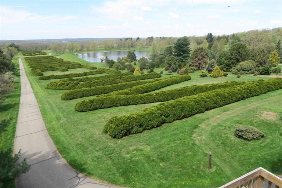 2015 05 02 57 Dawes Arboretum.jpg