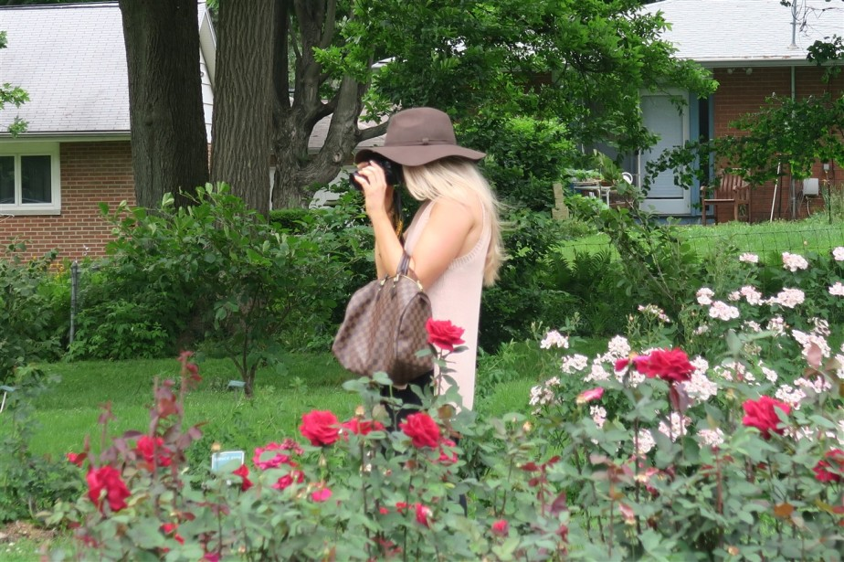 2015 06 07 224 Whetstone Rose Gardens.jpg