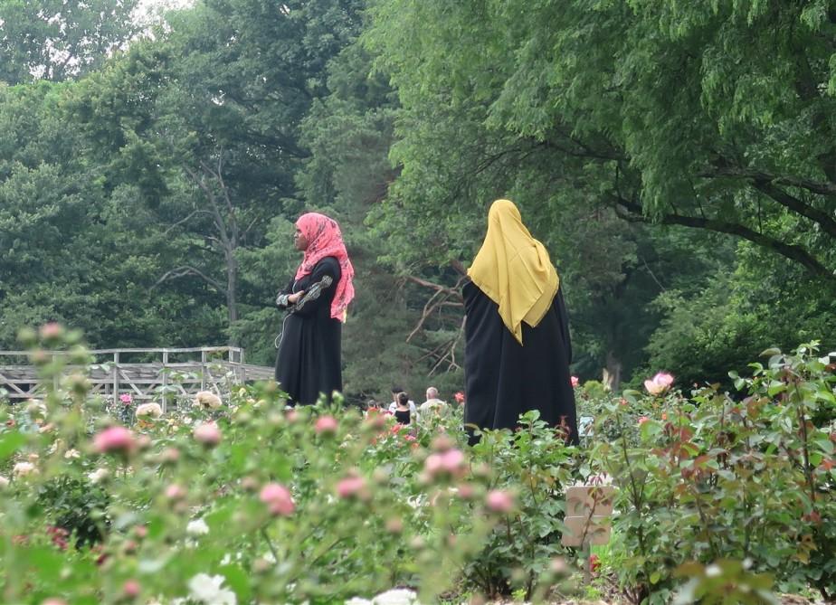 2015 06 07 246 Whetstone Rose Gardens.jpg