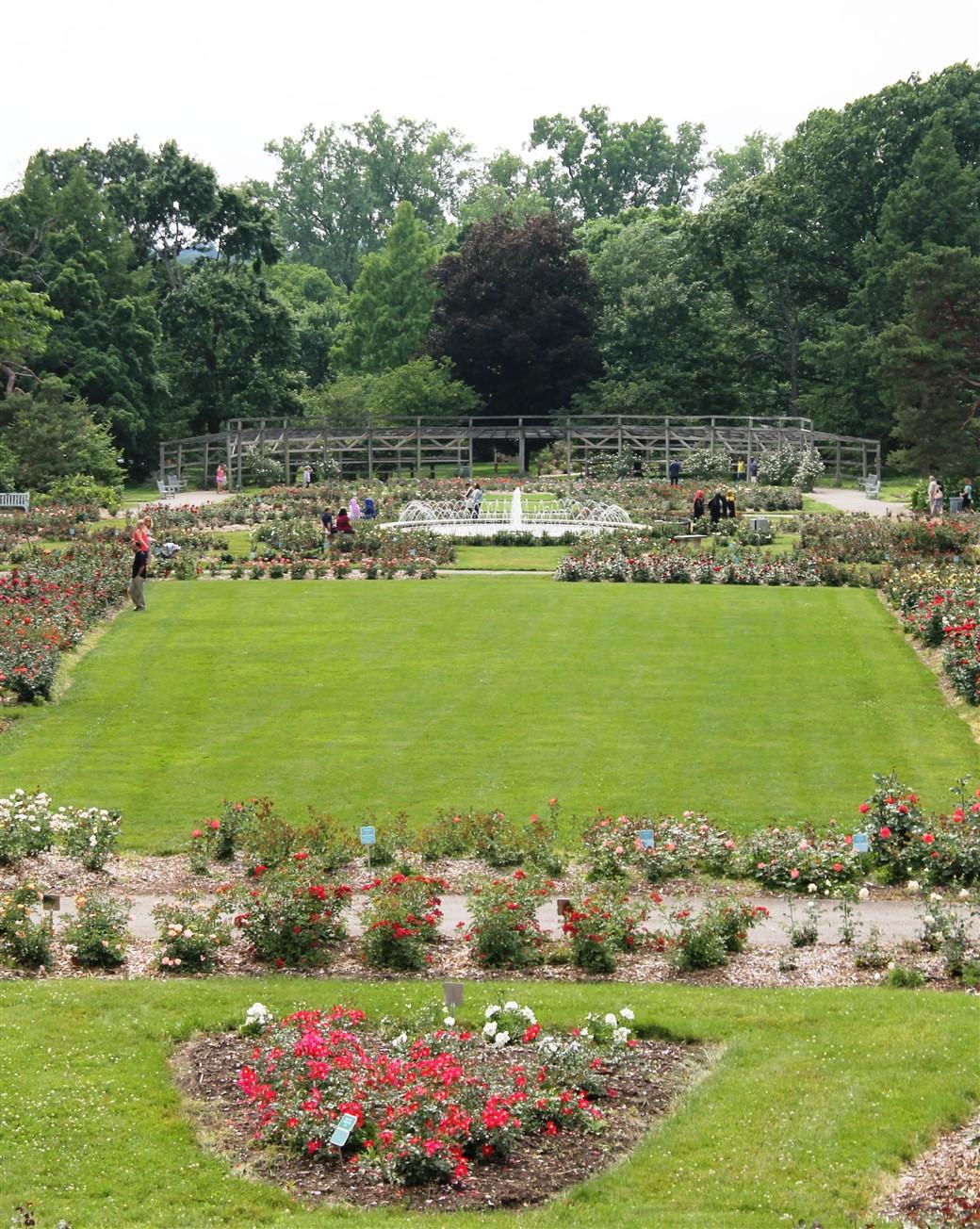 2015 06 07 294 Whetstone Rose Gardens