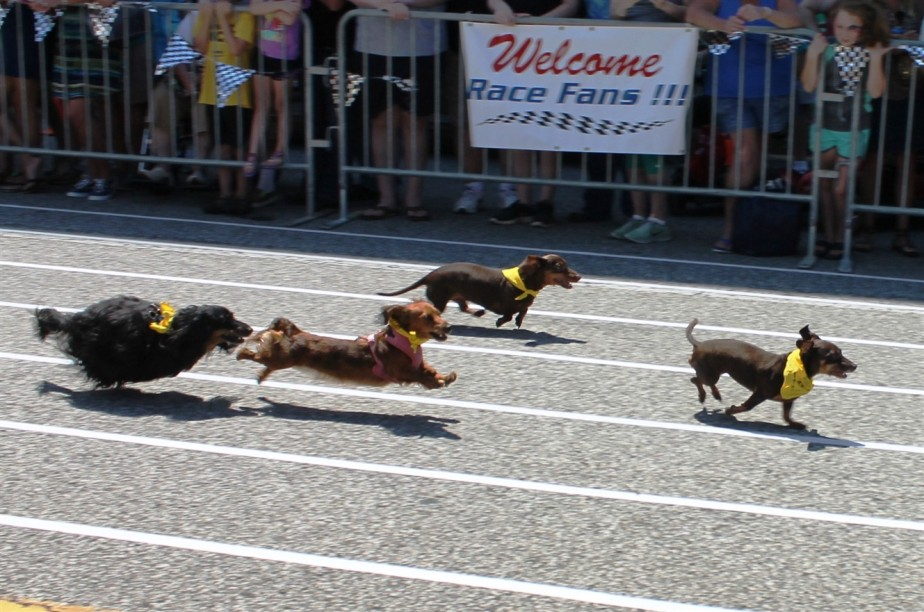 Huntington, WV – July 2015 – Hot DogBatman!