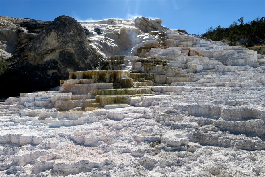 Yellowstone – National Parks Road Trip – Day8