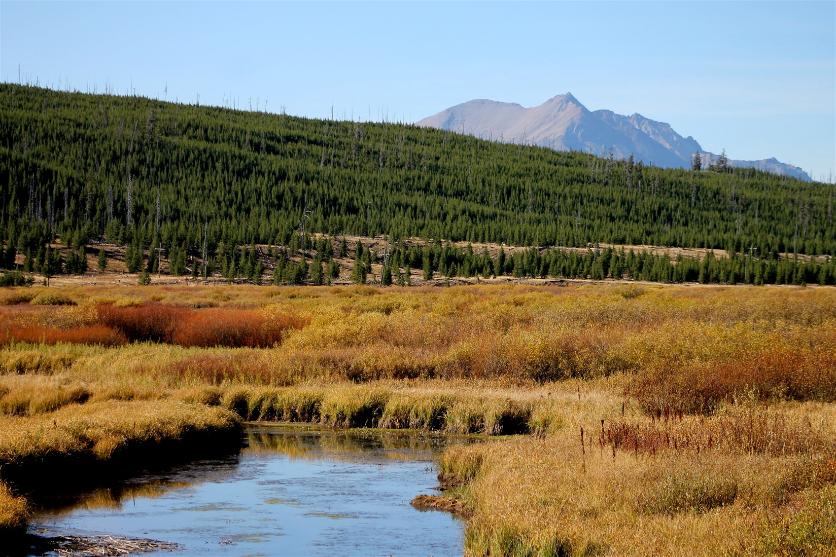 2015 09 11 151 Yellowstone National Park WY