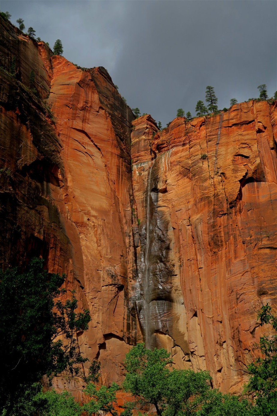 2015 09 15 26 Zion National Park UT