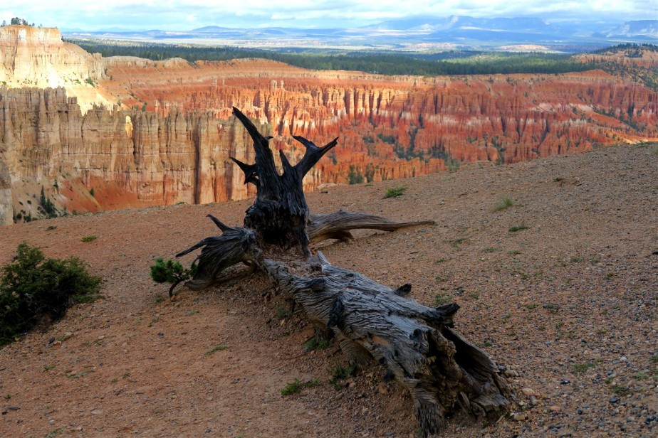 2015 09 16 106 Bryce National Park UT