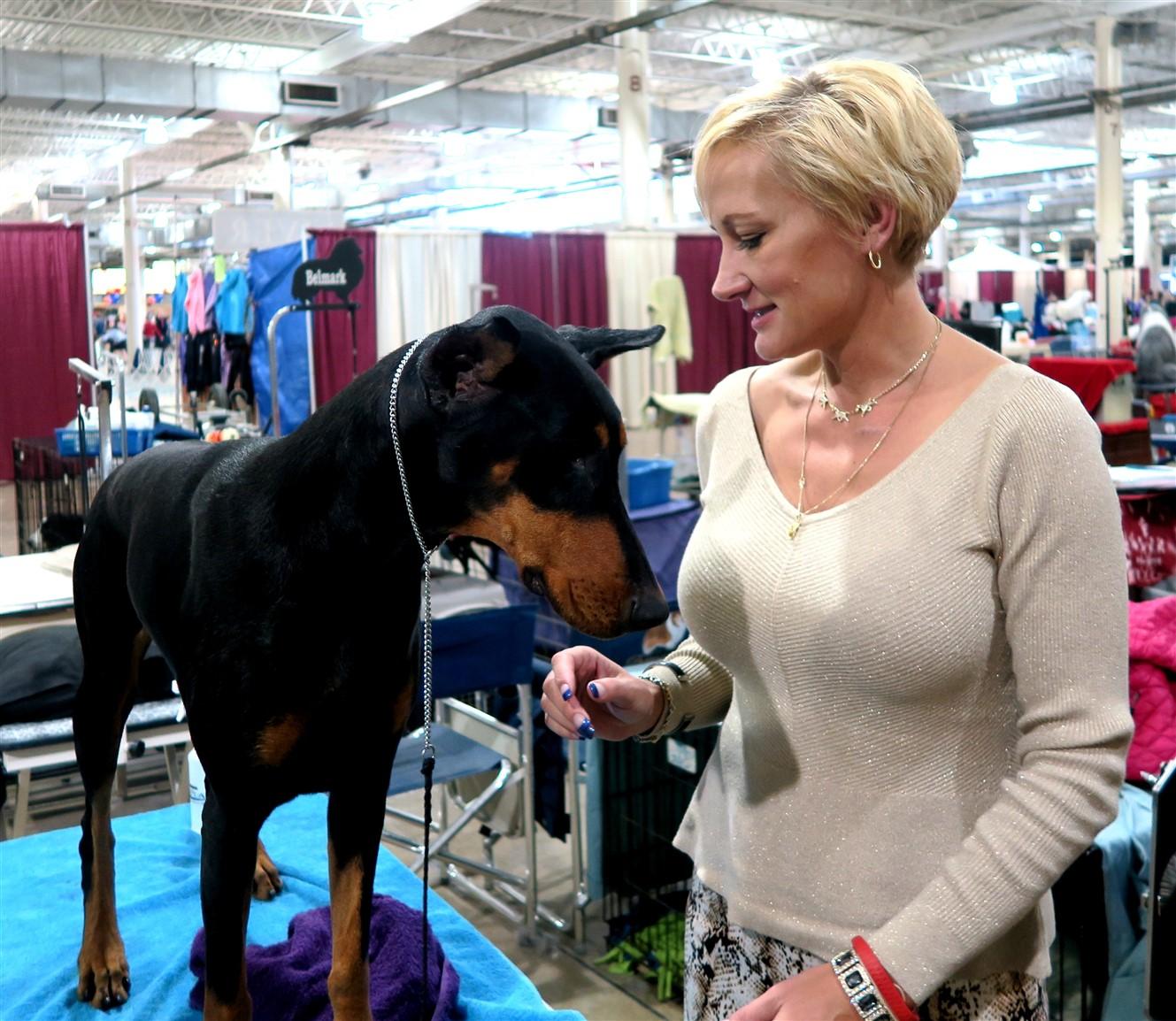 2015 11 15 89 Columbus Fall Dog Show.jpg