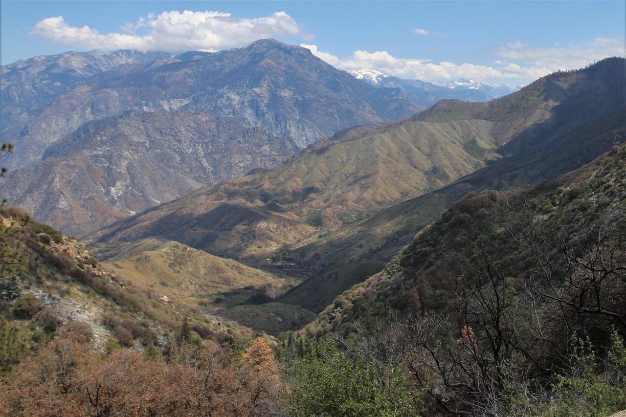 2016 05 23 66 Sequoia Kings Canyon.jpg