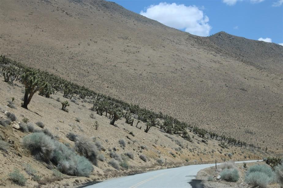 Sierra Nevada Mountains, California – Spring 2016 Road Trip – Day 4 – Sherman Pass & The EasternSierras