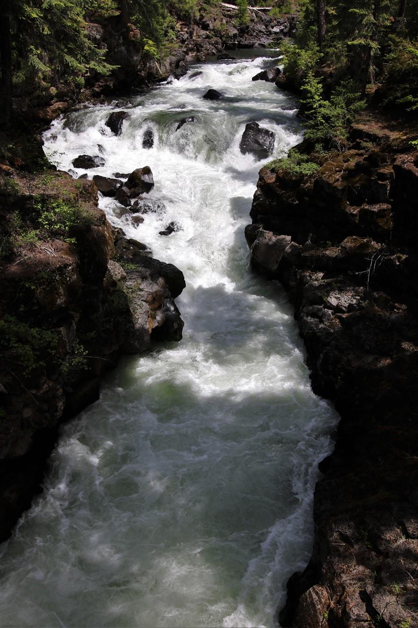 2016 05 30 64 Rogue River OR.jpg
