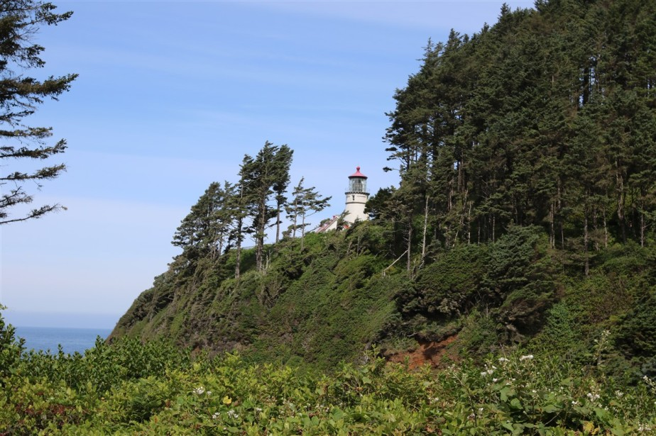 2016 06 01 53 Heceta Head OR.jpg
