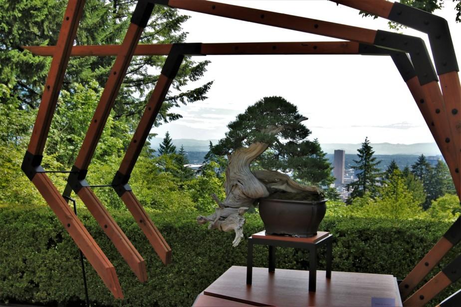 2016 06 03 53 Portland Japanese Gardens.jpg
