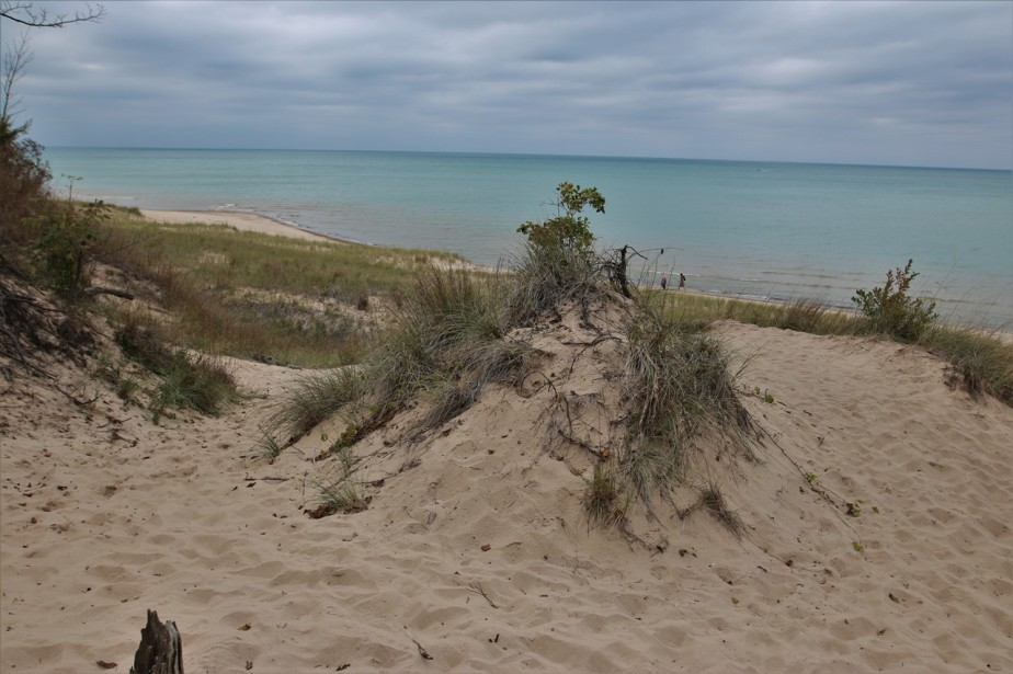 2016 10 15 63 Indiana Dunes IN State Park.jpg