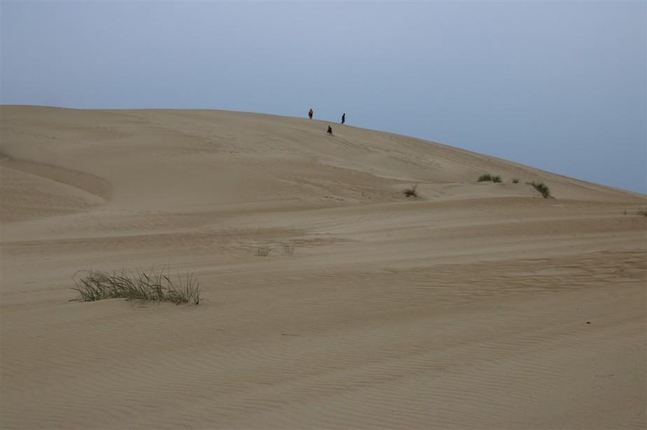 2016 11 09 83 Nags Head NC Jockeys Ridge State Park Sand Dunes.jpg