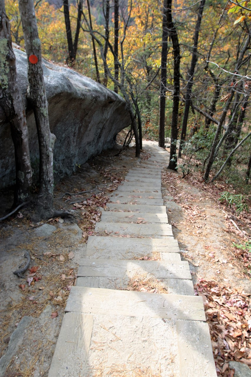 2016 11 11 62 Stone Mountain State Park NC.jpg
