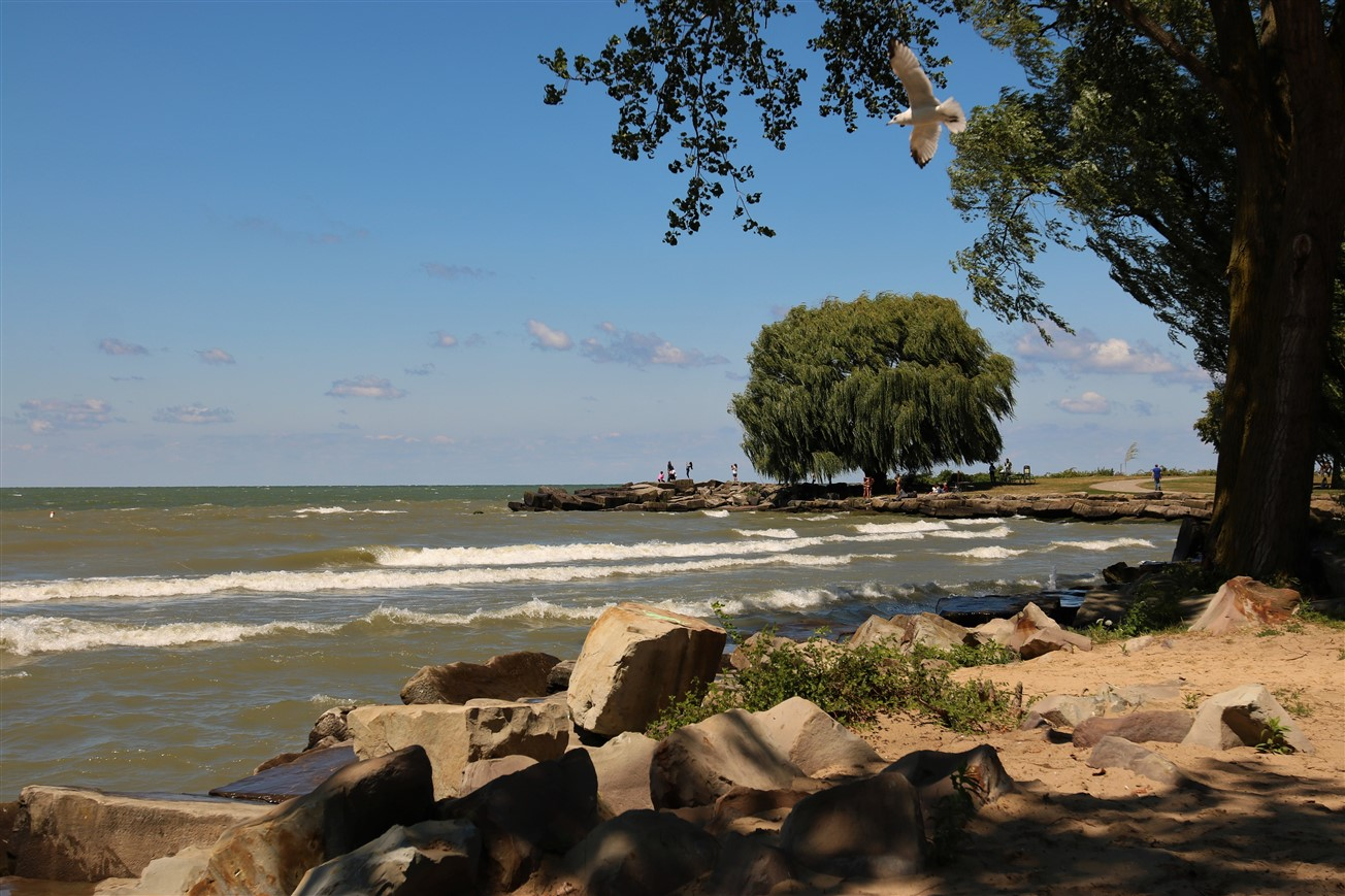 2017 08 05 279 Cleveland Edgewater Beach Day.jpg
