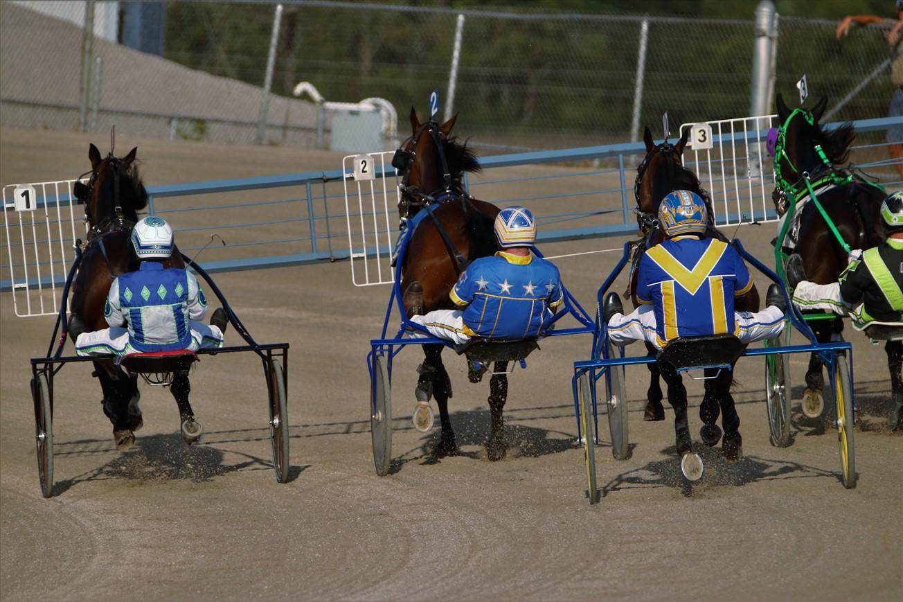 2017 08 12 115 Columbus Scioto Downs Horse Racing.jpg
