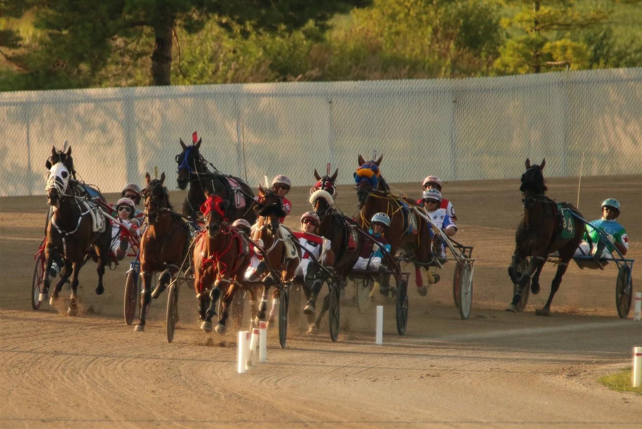 2017 08 12 147 Columbus Scioto Downs Horse Racing.jpg
