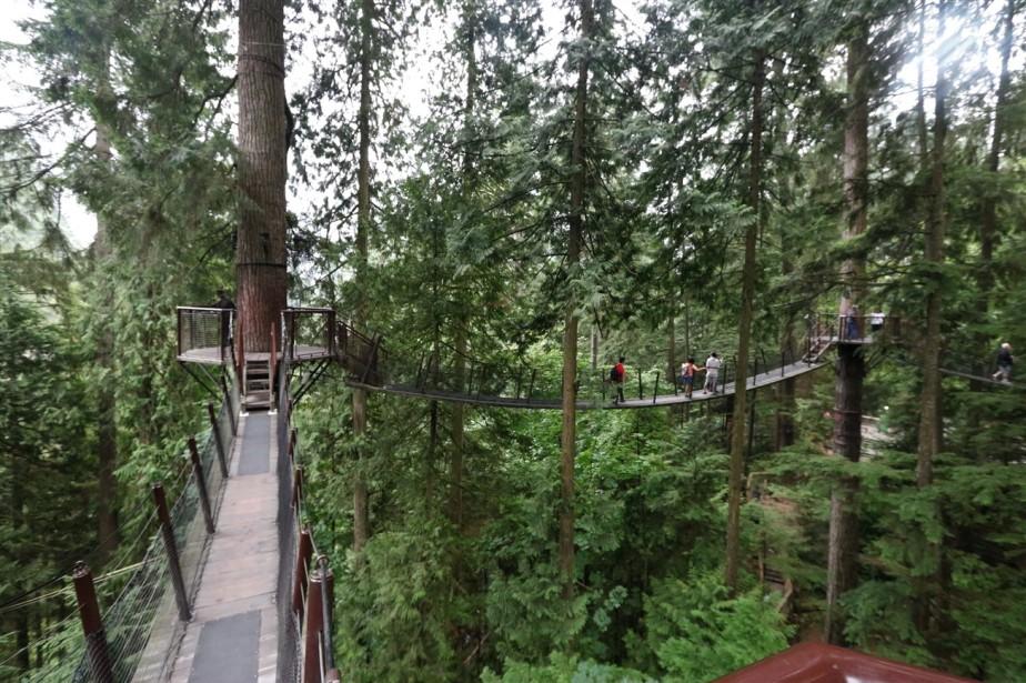 2017 09 08 88 Vancouver Capilano Park.jpg