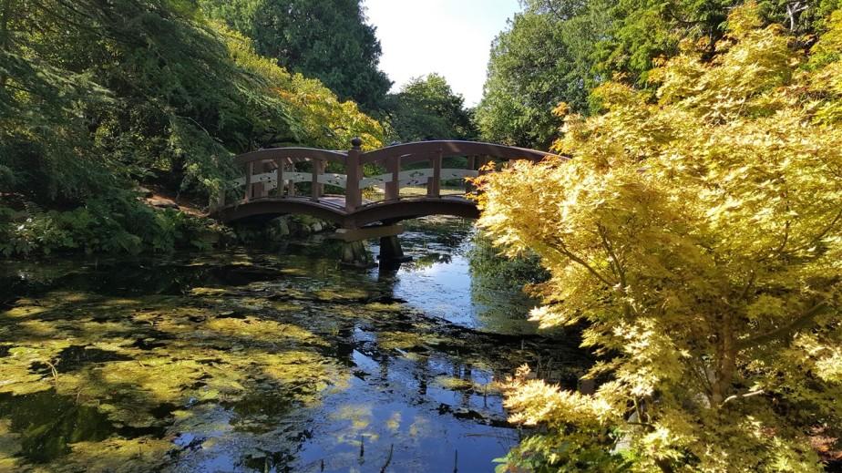 2017 09 10 181 Victoria BC Hatley Castle & Gardens.jpg