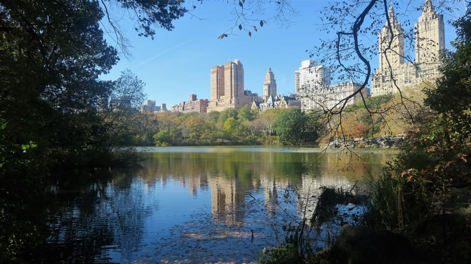 2017 11 11 71 New York City.jpg
