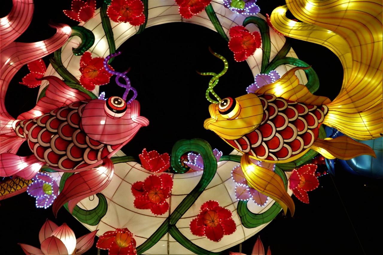 2017 12 03 93 Columbus Chinese Lantern Festival.jpg