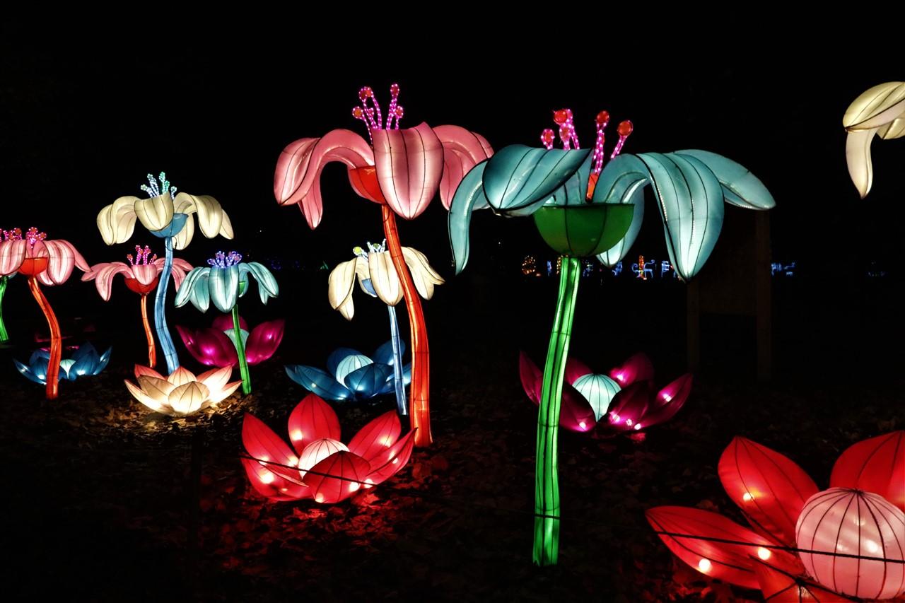2017 12 03 99 Columbus Chinese Lantern Festival.jpg
