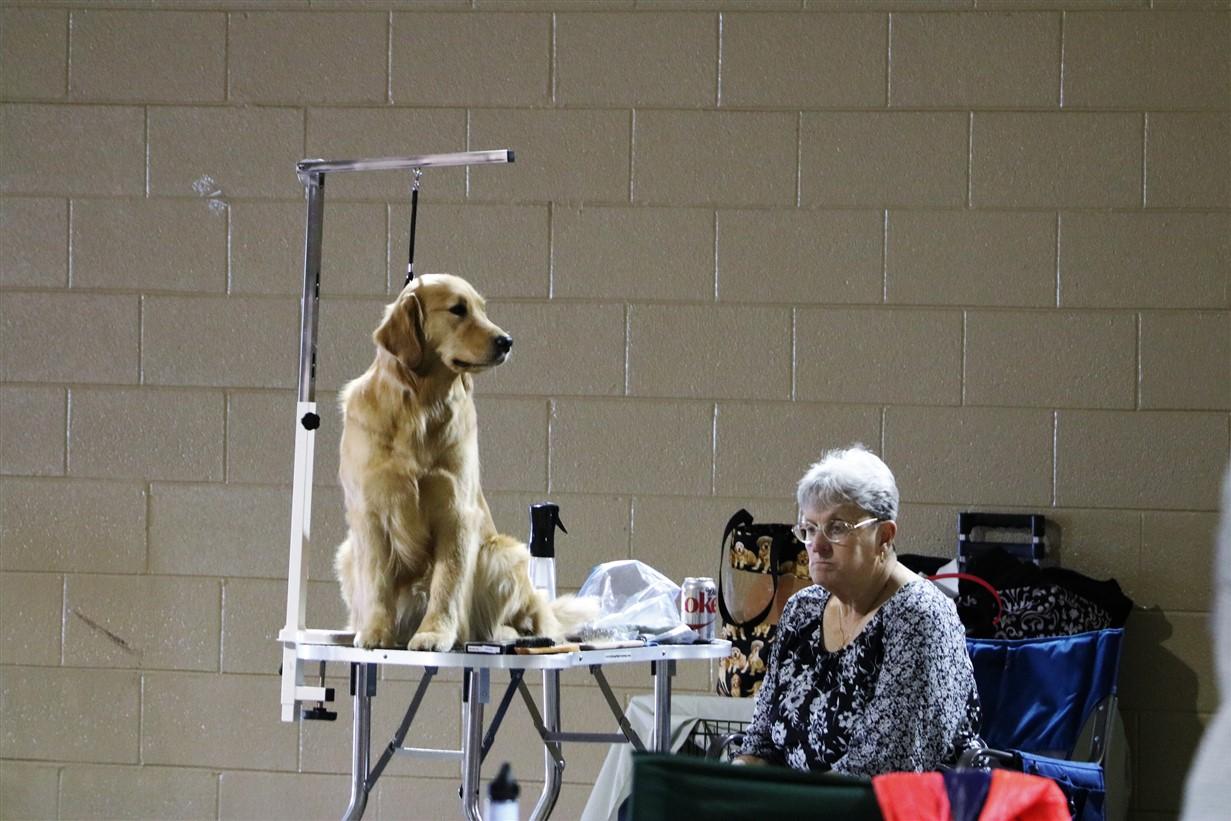 2018 04 22 10 Columbus Dog Show.jpg